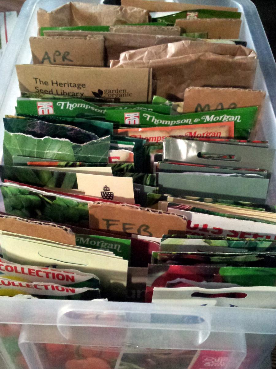 A well-stuffed seedbox