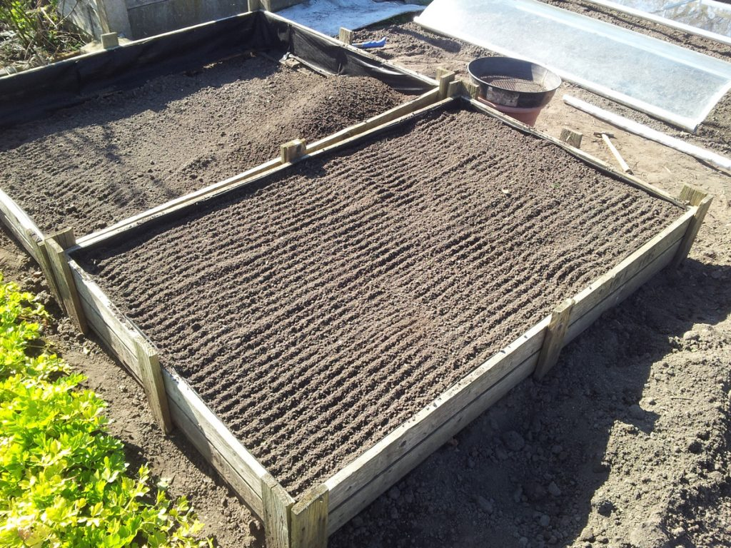 April 2016 - raised carrot beds in progress