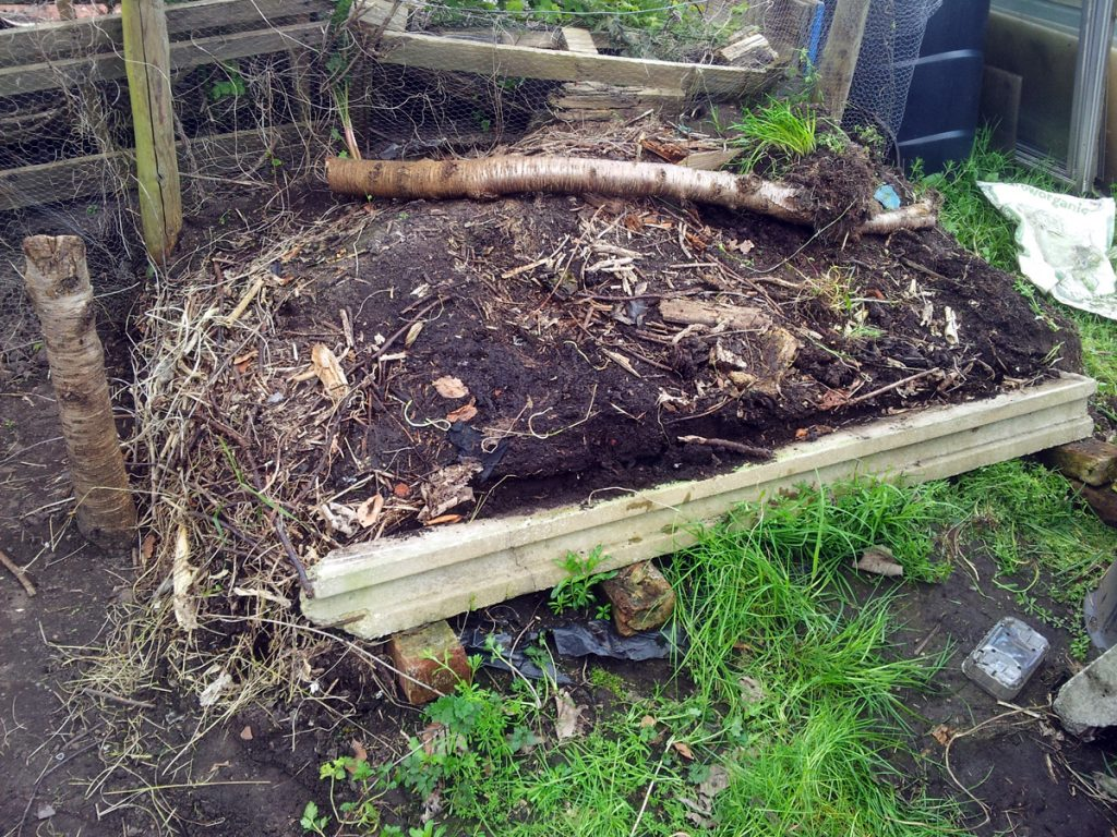 April 2016 Old Compost Heap