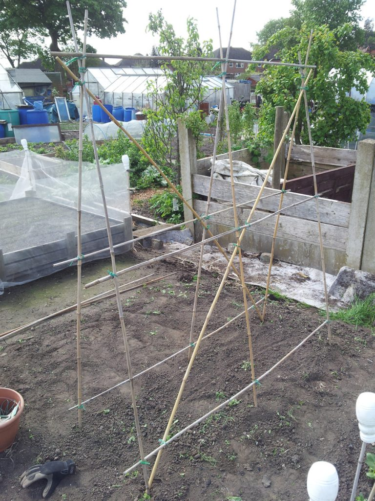 May 2016 sweet pea harp framework