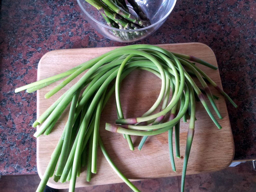 June 2016 garlic scapes