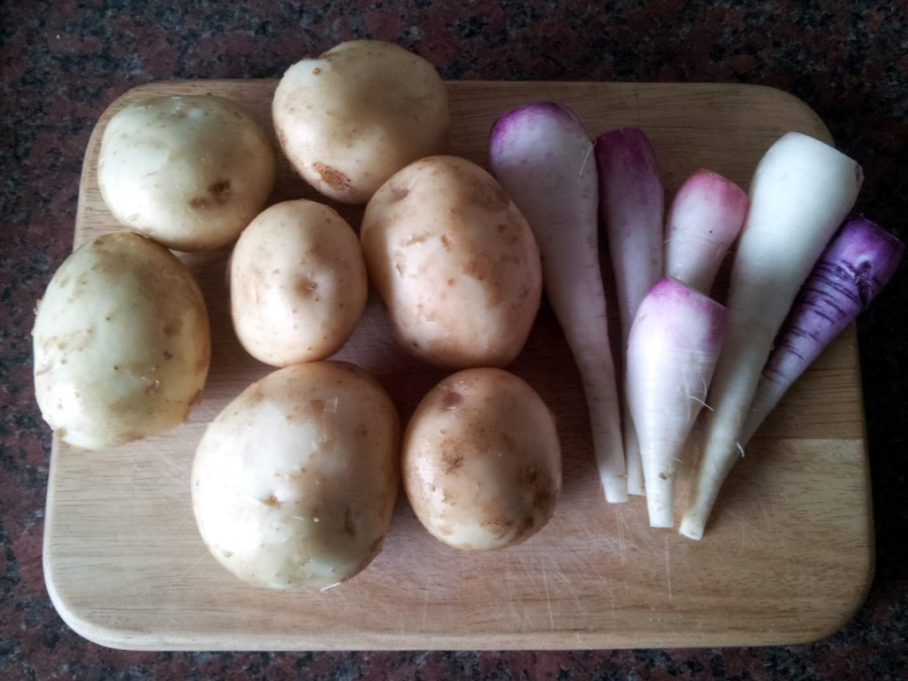 June 2016 potatoes and radishes
