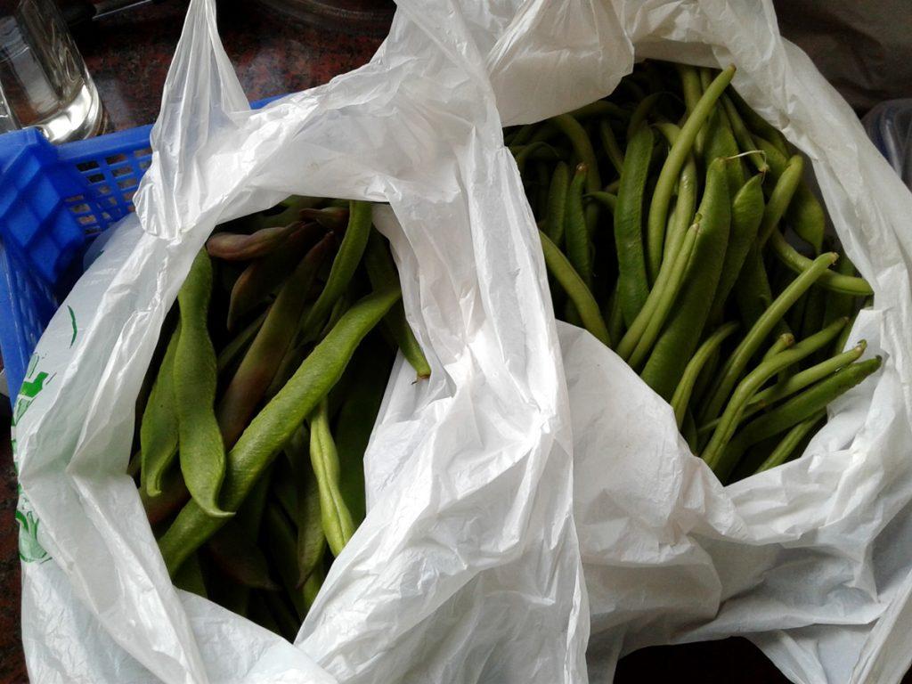 July 2017 - bean bags