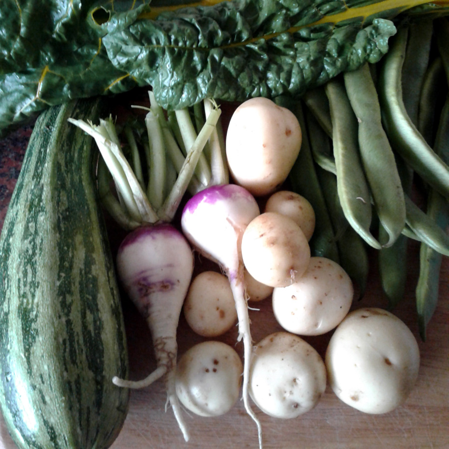 July 2016 vegetable assortment