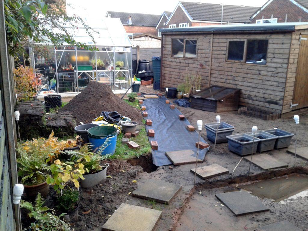 October 2016 back garden