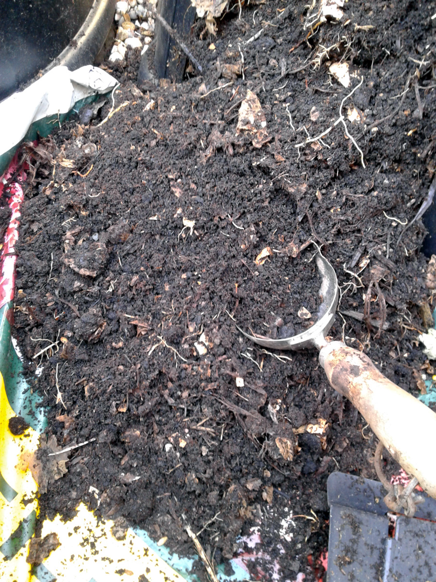 March 2017 home compost