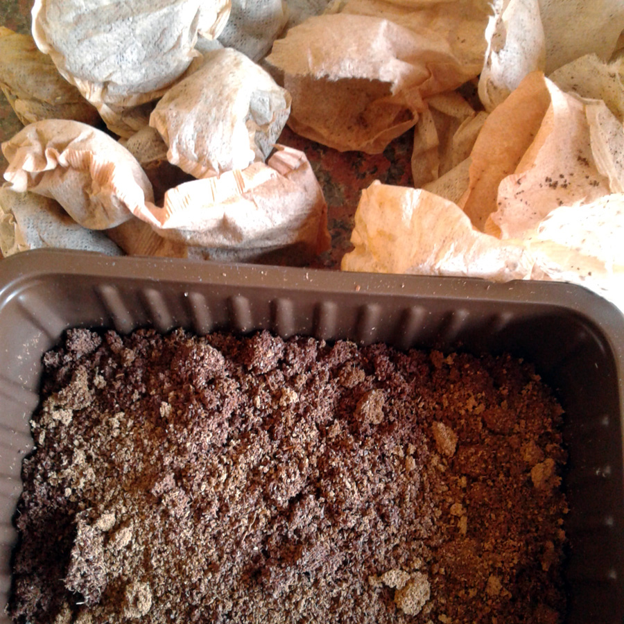 March 2017 - composting tea bags