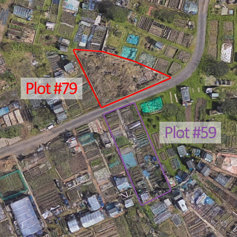 Plots #59 and #79 as of 2016?