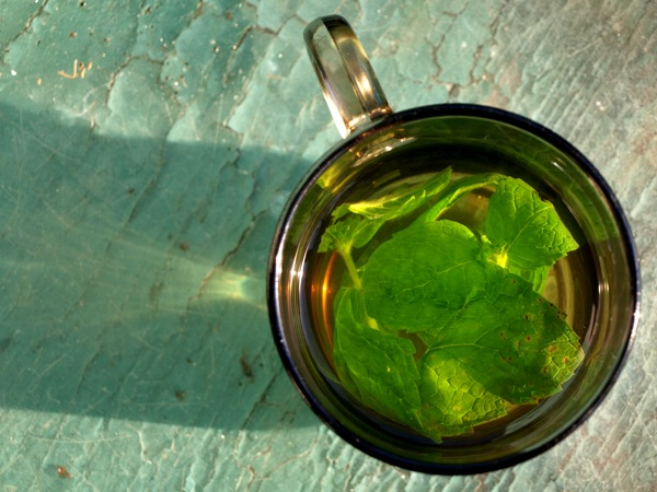 A Lovely Cup of Fresh Mint Tea